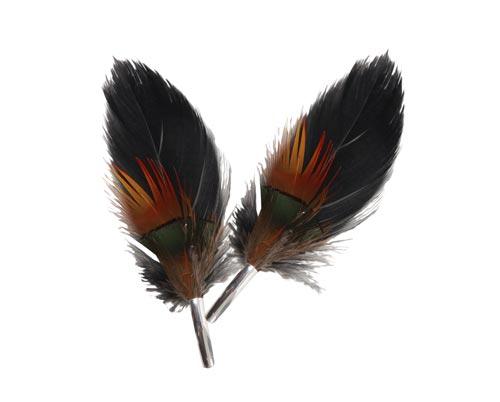 broche med påfugl fjer