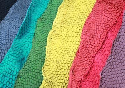 salmonskins i mange forskellige farver